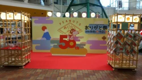 DSC_6499